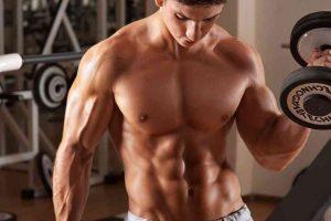 músculos laterales de la prensa