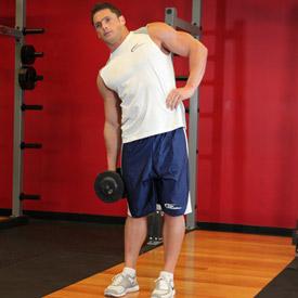 músculos abdominales oblicuos